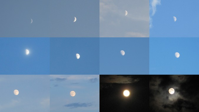 Moon collage
